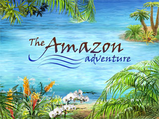 Image result for amazon adventure