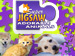 Super Jigsaw Adorable Animals 2 screenshot