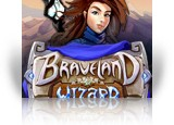 Download Braveland Wizard Game