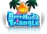 Download Brrrmuda Triangle Game
