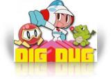 Download Dig Dug Game