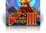Download Viking Brothers 3 Collector's Edition Game